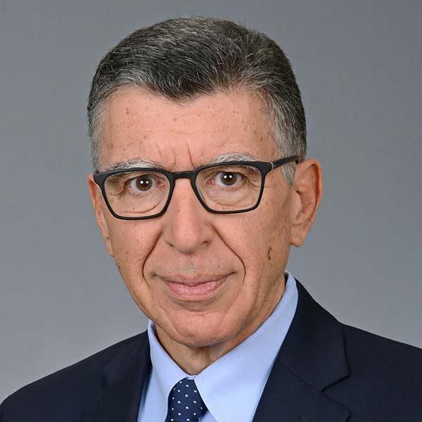 Prof. Dimitris N. Tatakis